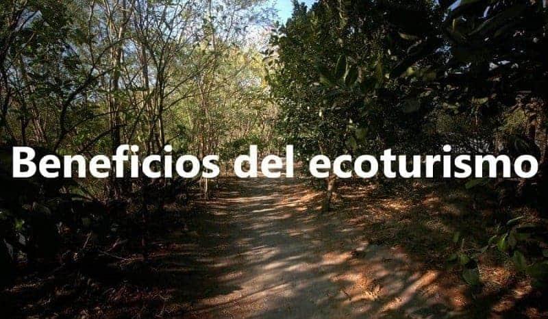 Ecoturismo: definición, origen, historia, principios y beneficios 6