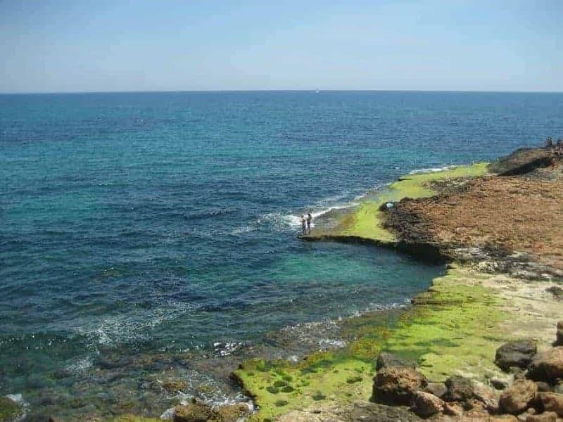 Las 10 mejores playas de Torrevieja, España 9