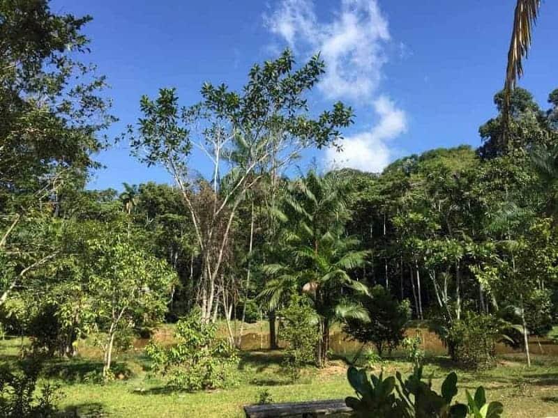 Los 16 mejores destinos para ecoturistas 5
