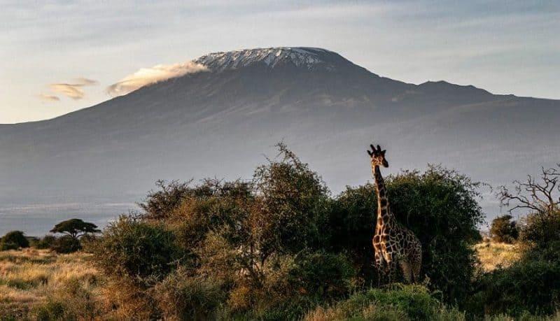 Los 16 mejores destinos para ecoturistas 12