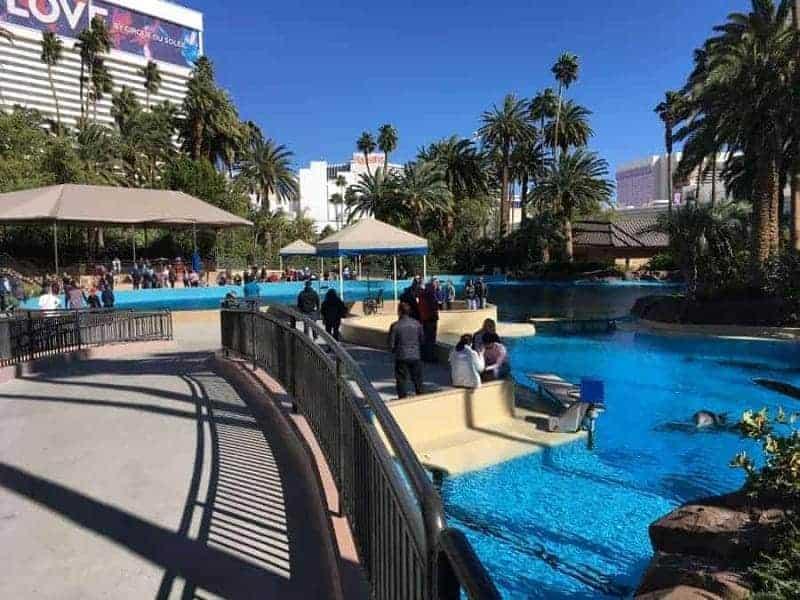 20 cosas que ver y hacer en Las Vegas, Estados Unidos 2