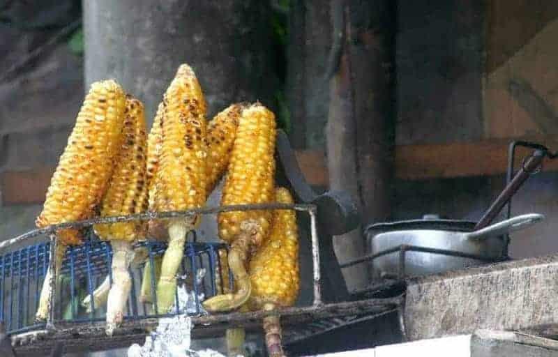 Elotes (mazorca de maíz)