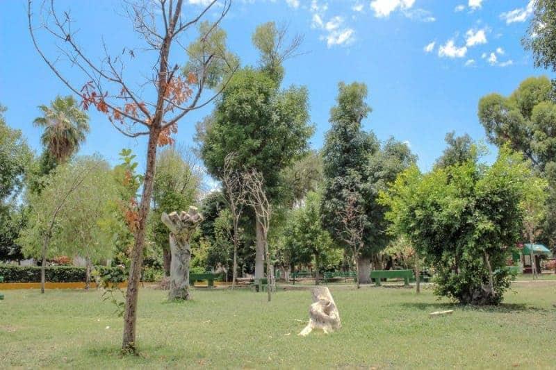 Bosque Venustiano Carranza