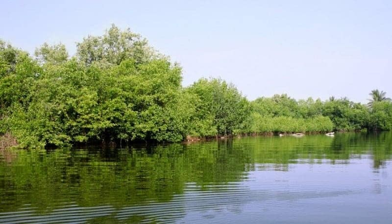 Laguna Pozuelos