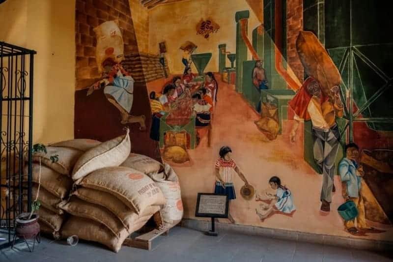 Museo del Café de Chiapas