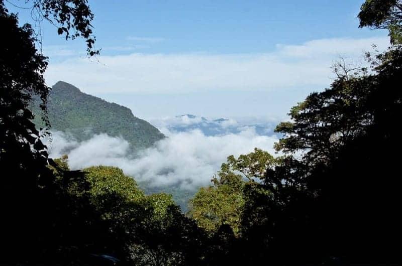 Reserva de la Biosfera El Triunfo