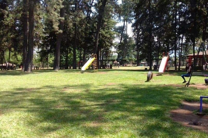 Parque La Pinera