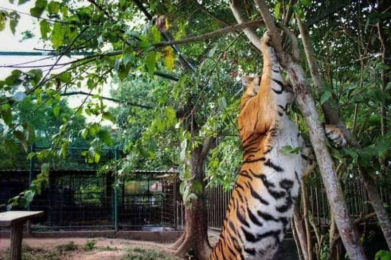 Reserva ecológica Akga'Pun Kitsis'Tanka