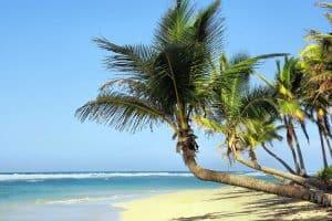 ¿Cuál es la mejor época para viajar a Cuba? 8