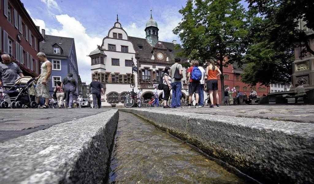 10 lugares que ver en Friburgo 2