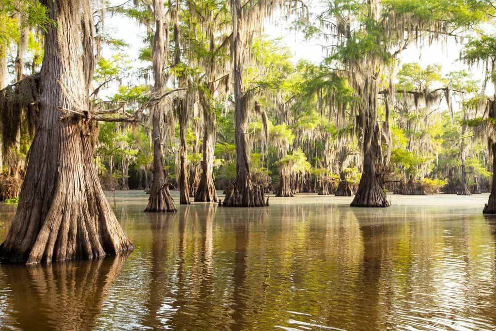 Los 10 lagos de Estados Unidos más bonitos 8