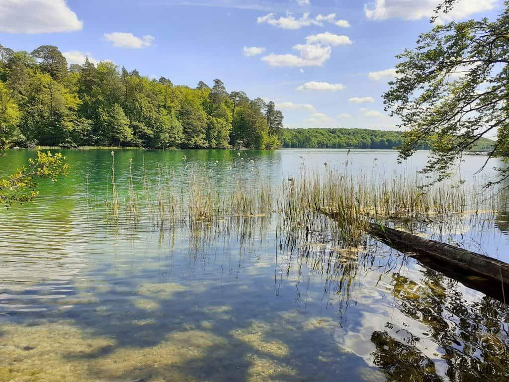 18 lagos en Berlín y Brandeburgo para bañarse 15