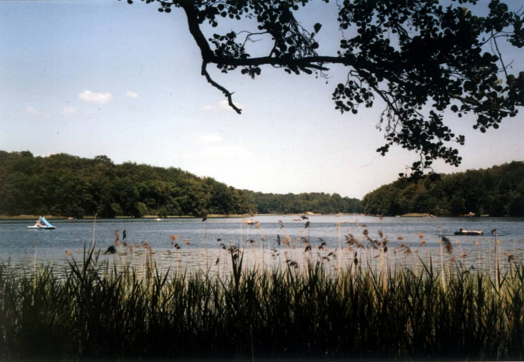 18 lagos en Berlín y Brandeburgo para bañarse 6