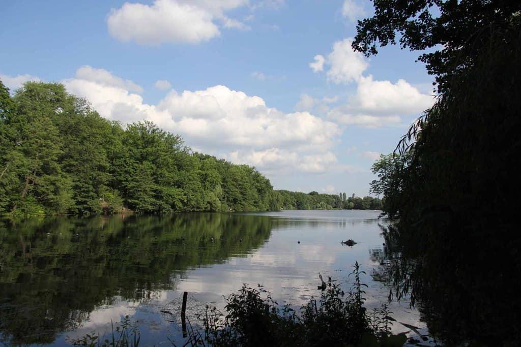 18 lagos en Berlín y Brandeburgo para bañarse 9