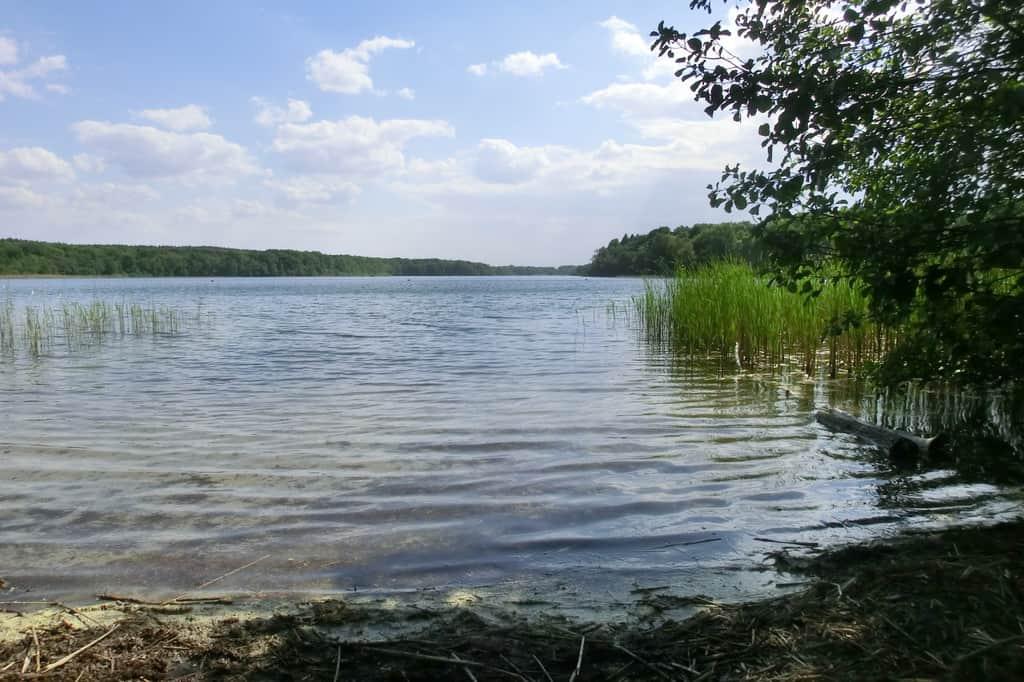 18 lagos en Berlín y Brandeburgo para bañarse 14