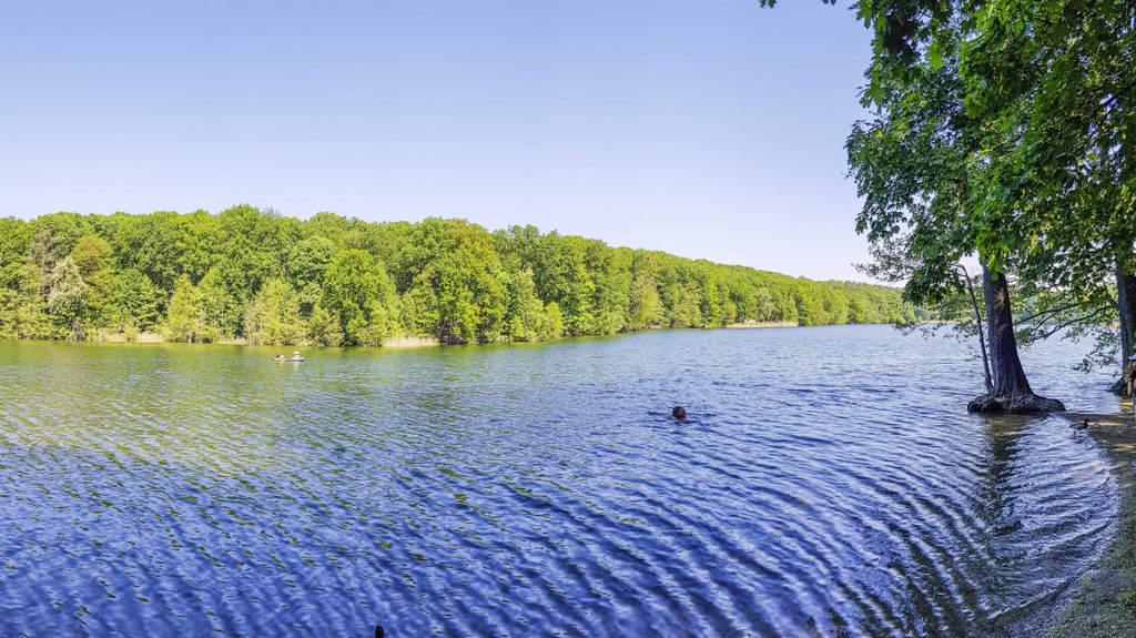 18 lagos en Berlín y Brandeburgo para bañarse 4