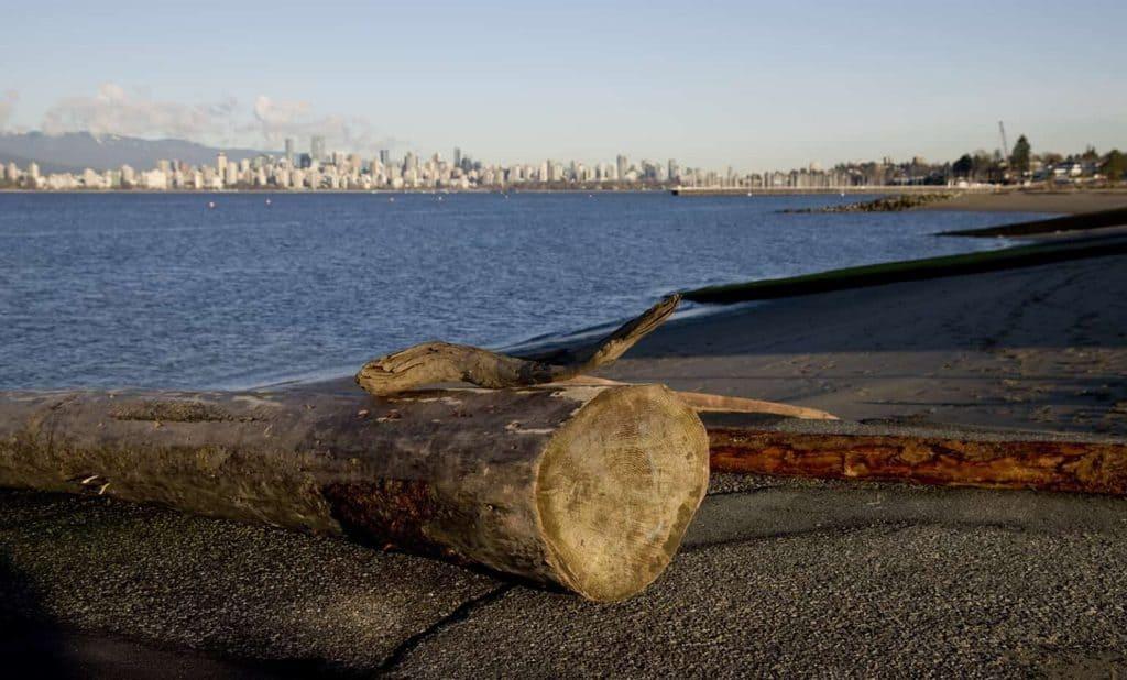 22 lugares de interés que ver en Vancouver, Canadá 19