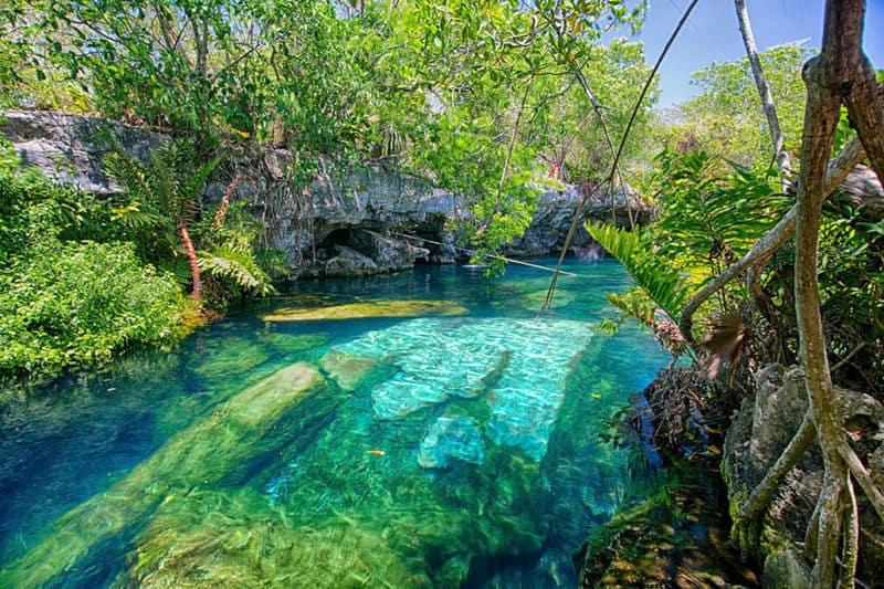 20 mejores cenotes en México 8