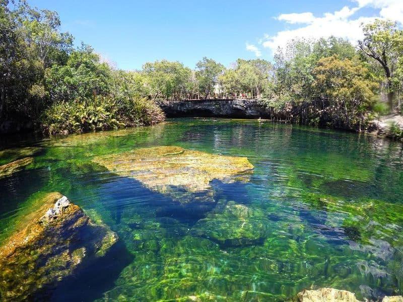 20 mejores cenotes en México 7