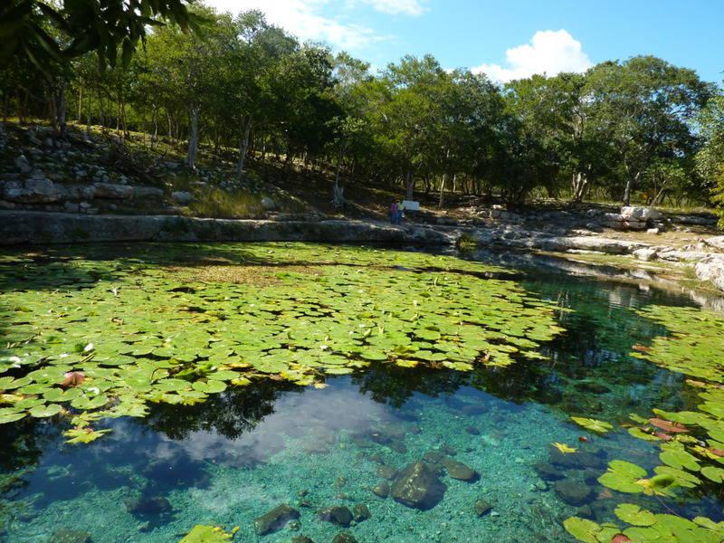 20 mejores cenotes en México 19