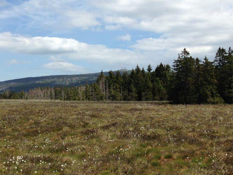 10 lugares que ver en Harz 7