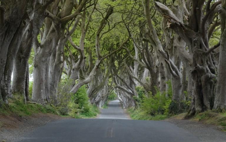 9 lugares que ver en Irlanda del Norte 5