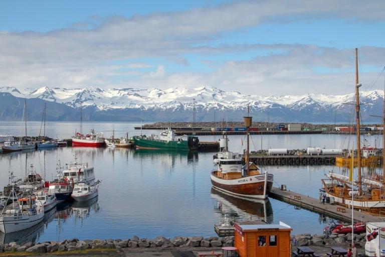 35 lugares que ver en Islandia 15
