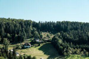 10 lugares que ver en la Selva Negra 9
