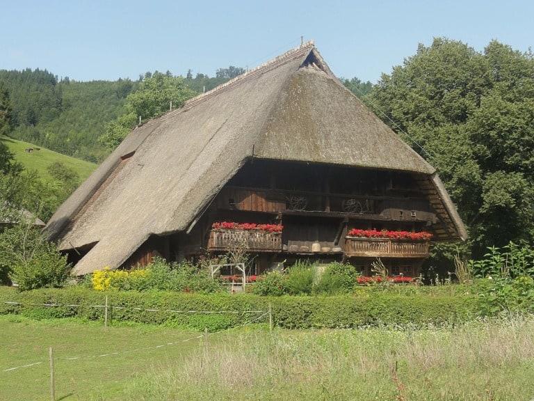 10 lugares que ver en la Selva Negra 8