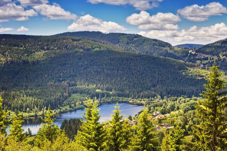 10 lugares que ver en la Selva Negra 6