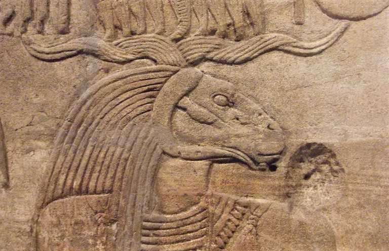 Dioses egipcios: qué, cuántos, cómo son y lista 7