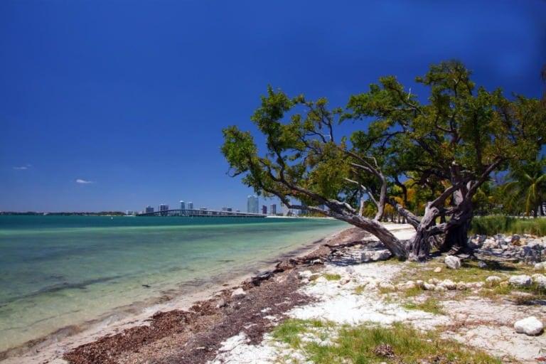 17 mejores playas de Miami 13