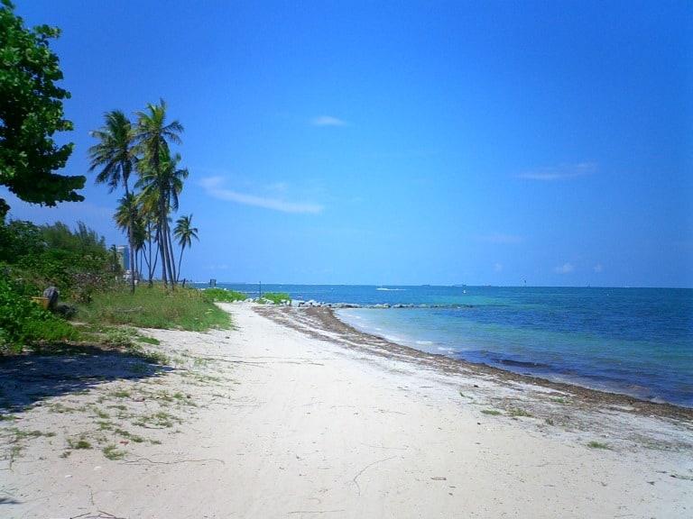 17 mejores playas de Miami 7