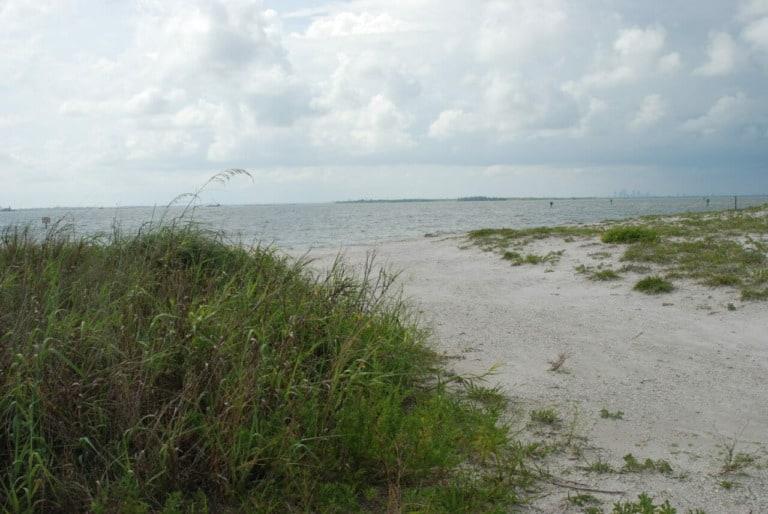 17 mejores playas en Tampa 2