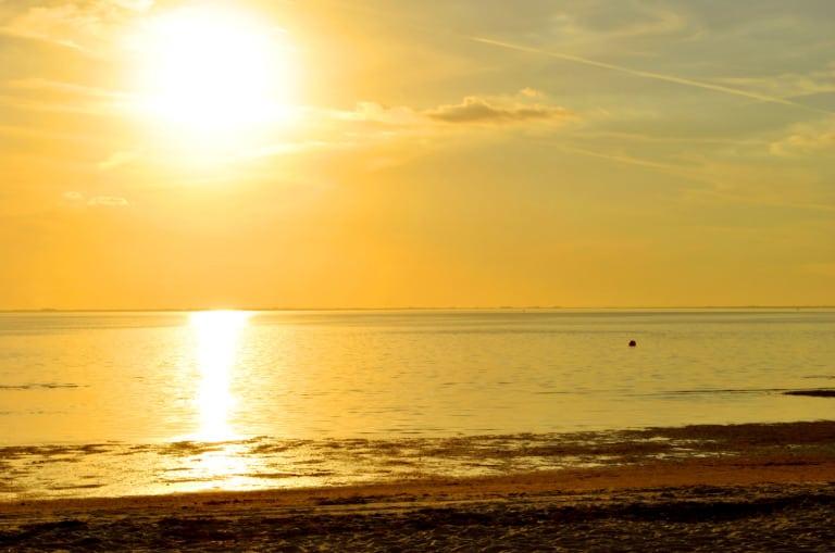 17 mejores playas en Tampa 1