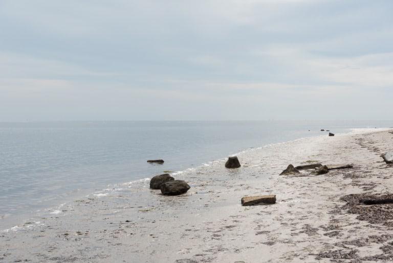 17 mejores playas en Tampa 14