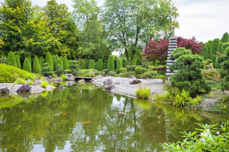 17 lugares que ver en Bonn 9