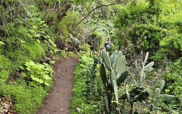 12 lugares que ver en Gran Canaria 11