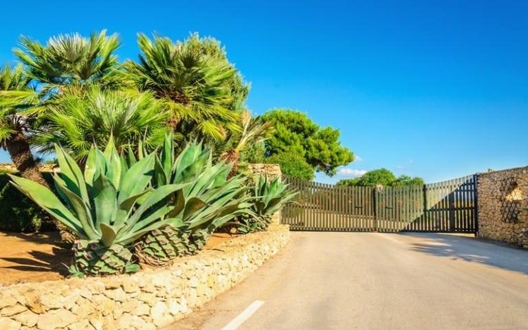 12 lugares que ver en Gran Canaria 12