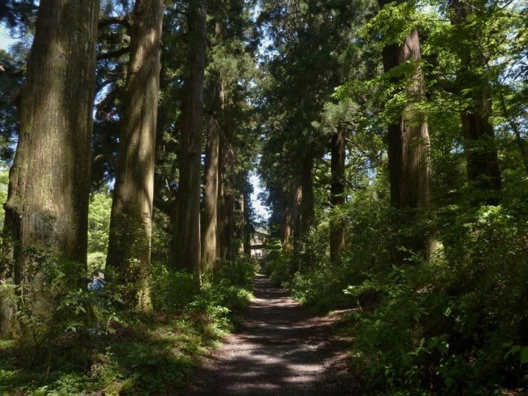 15 lugares que ver en Hakone 10