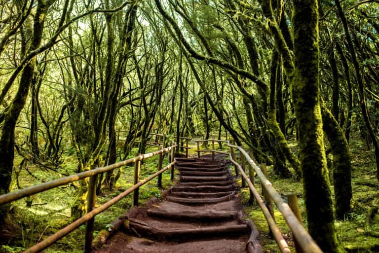9 lugares que ver en La Gomera 8