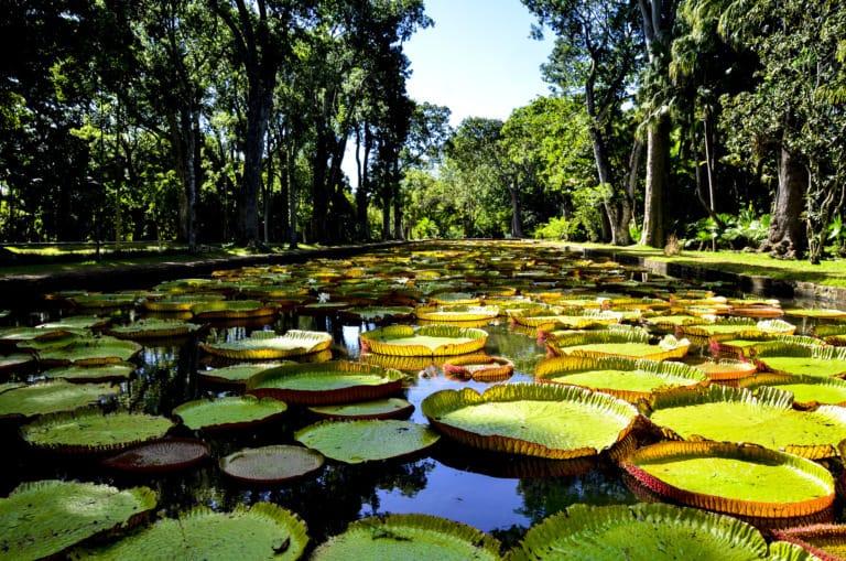 10 lugares que ver en Mauricio 8