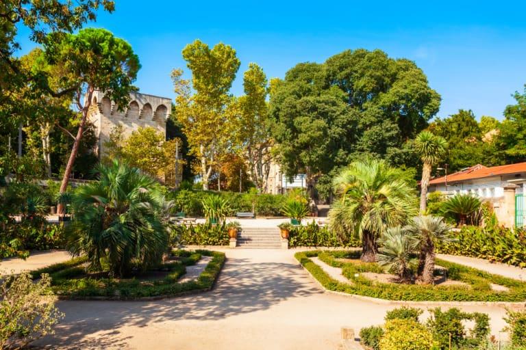 21 lugares que ver en Montpellier 10