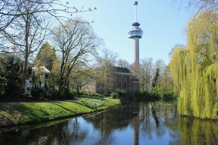 25 lugares que ver en Rotterdam 2
