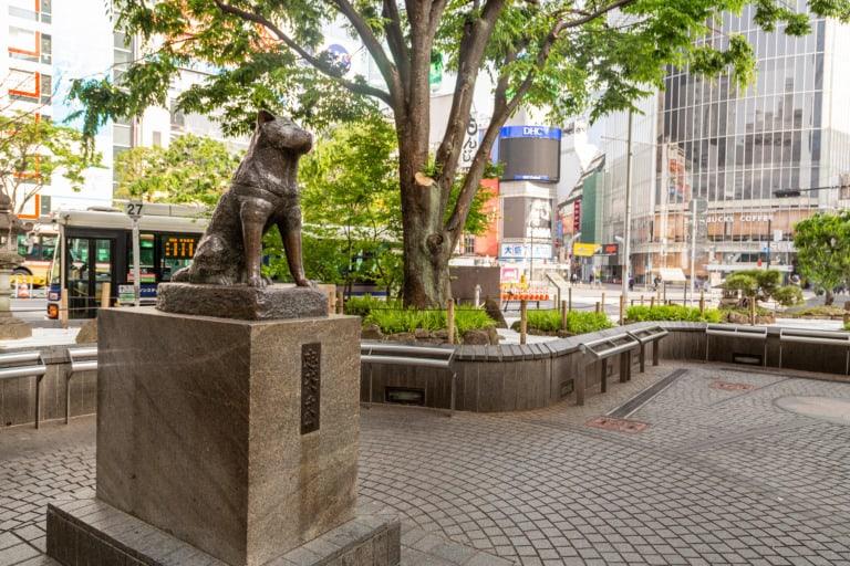 15 lugares que ver en Tokio 2