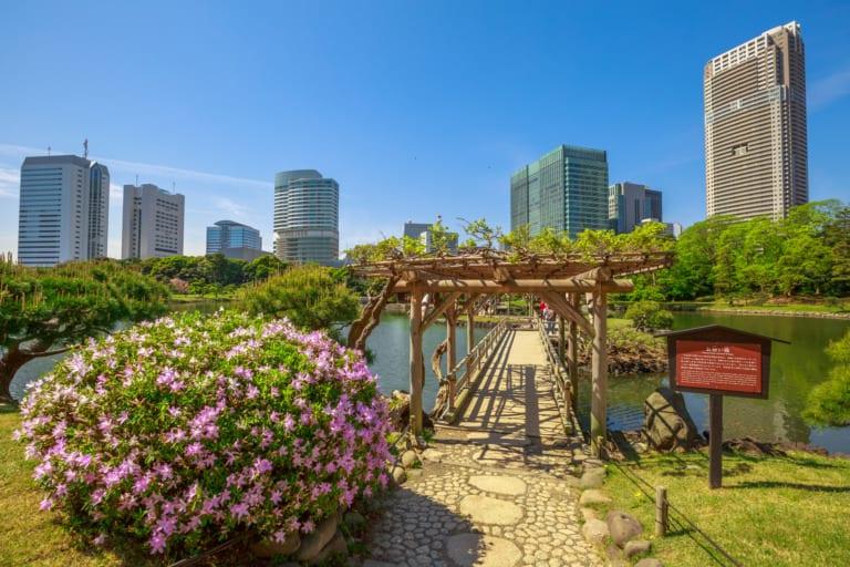 15 lugares que ver en Tokio 11