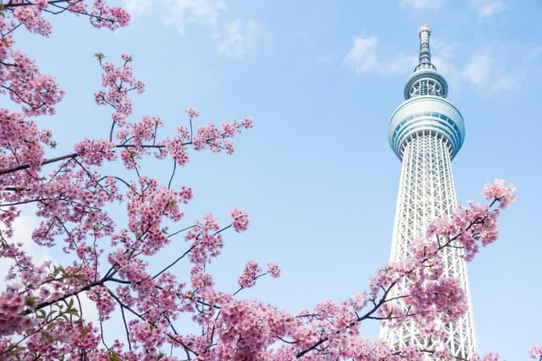 15 lugares que ver en Tokio 4