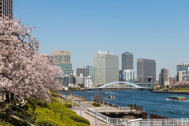 15 lugares que ver en Tokio 12