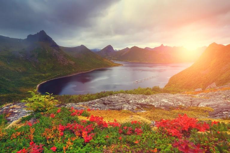 20 lugares que ver en Tromso 16