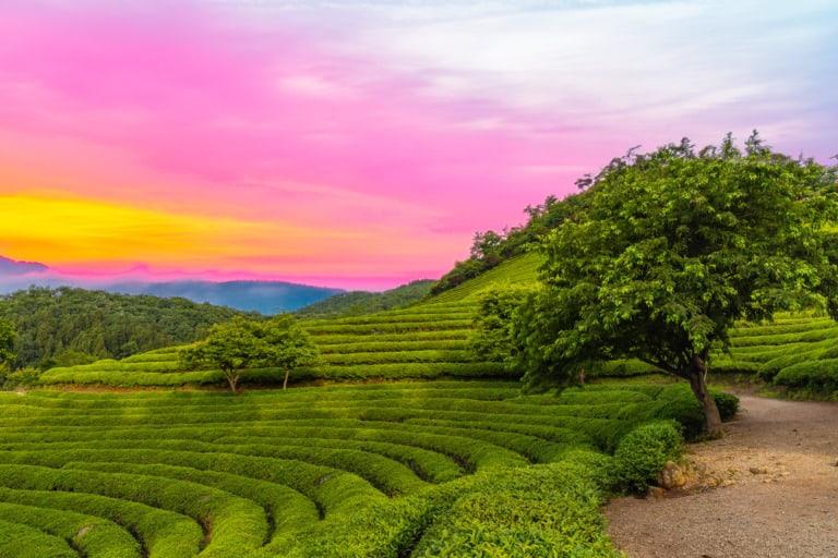 10 ciudades de Corea del Sur más bonitas 10